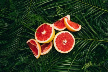 top view of fresh grapefruit slices on palm leaves
