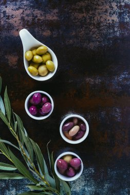 top view of ingredients for olive oil and twigs on shabby surface