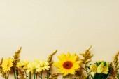 lapos feküdt különböző szép virág elrendezése a bézs háttér