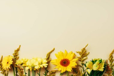 flat lay with various beautiful flowers arrangement on beige backdrop