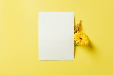top view of flowers and white blank card on yellow backdrop