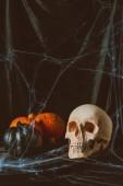 Fotografie Lebka a halloween dýně na černou látkou s pavučina