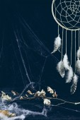 Fényképek dreamcatcher with feathers in darkness with spider web and dry branch