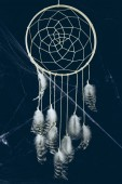 Fényképek dreamcatcher with feathers in darkness with spider web