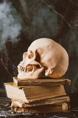 Halloween skull on ancient books on black cloth with smoke stock vector