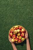 vágott fából készült tál, alma, zöld fű háttér gazdaság nő képe