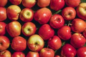 Top view of different apples on green grass background