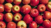 pohled shora červených jablek na zelené trávě