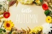 plochý ležela s různými krásné květy s nápisem hello podzimu ve středu na béžové pozadí