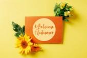 pohled shora oranžové karty s úvodní podzimní nápisy, slunečnice, gerbera a lily květy na žlutém pozadí