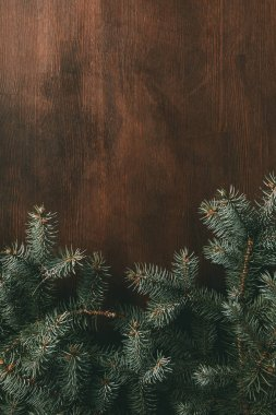 green fir branches on brown wooden background