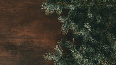 green fir branches on dark wooden background