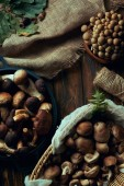 Photo top view of assorted raw edible mushrooms in basket and bowls, sackcloth and rope on wooden table
