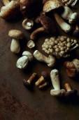 Fotografie Draufsicht der verschiedenen roh essbaren Pilze auf dunklen Grunge hintergrund