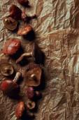 Fotografie pohled shora čerstvých surovin chutné Klouzek hub na pergamenu