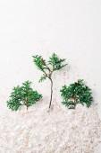a fehér hátteret a zöld fenyő fa ágai és konfetti felülnézet