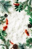 lapos feküdt téli elrendezése fenyő fa ágai, a kúpok és a homoktövis, a háttér fehér vatta