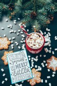 Photo flat lay with cup of hot drink with marshmallow, cookies and postcard with have yourself merry little christmas lettering on black tabletop