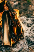 Detailní záběr z hořícího dřeva ohně v lese