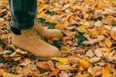 oříznutý pohled člověka v oranžové boty, stojící na barevné listí
