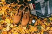 Fotografie pohled shora na materiál pro táboření a oranžové boty na krásné podzimní listí