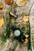 Fotografie pohled shora na kompasu na věku rustikální stromová kůra s listy