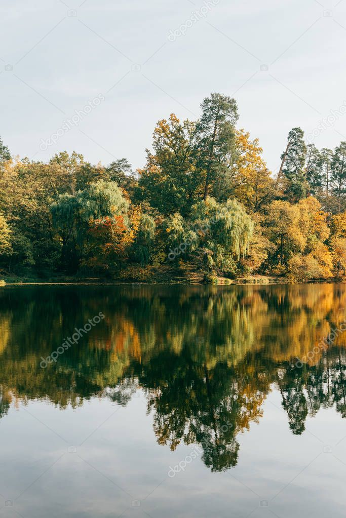 beautiful autumal landscape with colorful trees and lake