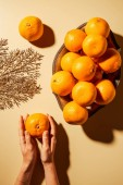 Fotografie Cropped shot of woman holding tangerine on beige background with metal bowl and decorative twig