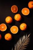Fotografie flache Lay mit frischen Mandarinen und dekorativen goldenen Zweig auf schwarze Tischplatte