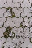 Photo full frame image of paving stone path background