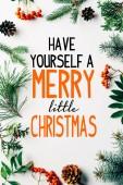 plochý ležel s uspořádáním zimní borové větve, šišky a rakytníku na bílém pozadí s mají sami a merry little christmas inspirace