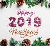 Fotografie byt ležel s 2019 rok podepsat růžové konfety, borovice strom větví a šišky na bílém pozadí s šťastný nový rok 2019 nápisy