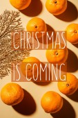 Flat lay with wholesome mandarins and decorative golden twig on beige background with christmas is coming lettering