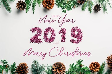 Flat lay with 2019 year sign made of pink confetti, pine tree branches and cones on white background with