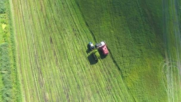 A kombájn eltávolítja a zöld fű. A kaszált fű vezérlőjébe a traktor-pótkocsi.