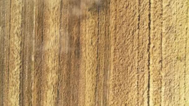 A légi felvétel a modern össze, a mező a búza betakarítás. Repülő felett össze.