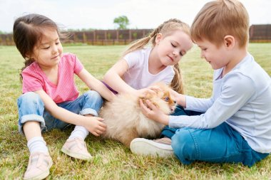 Full length portrait of three cute children playing with fluffy dog sitting on green lawn outdoors on Summer day