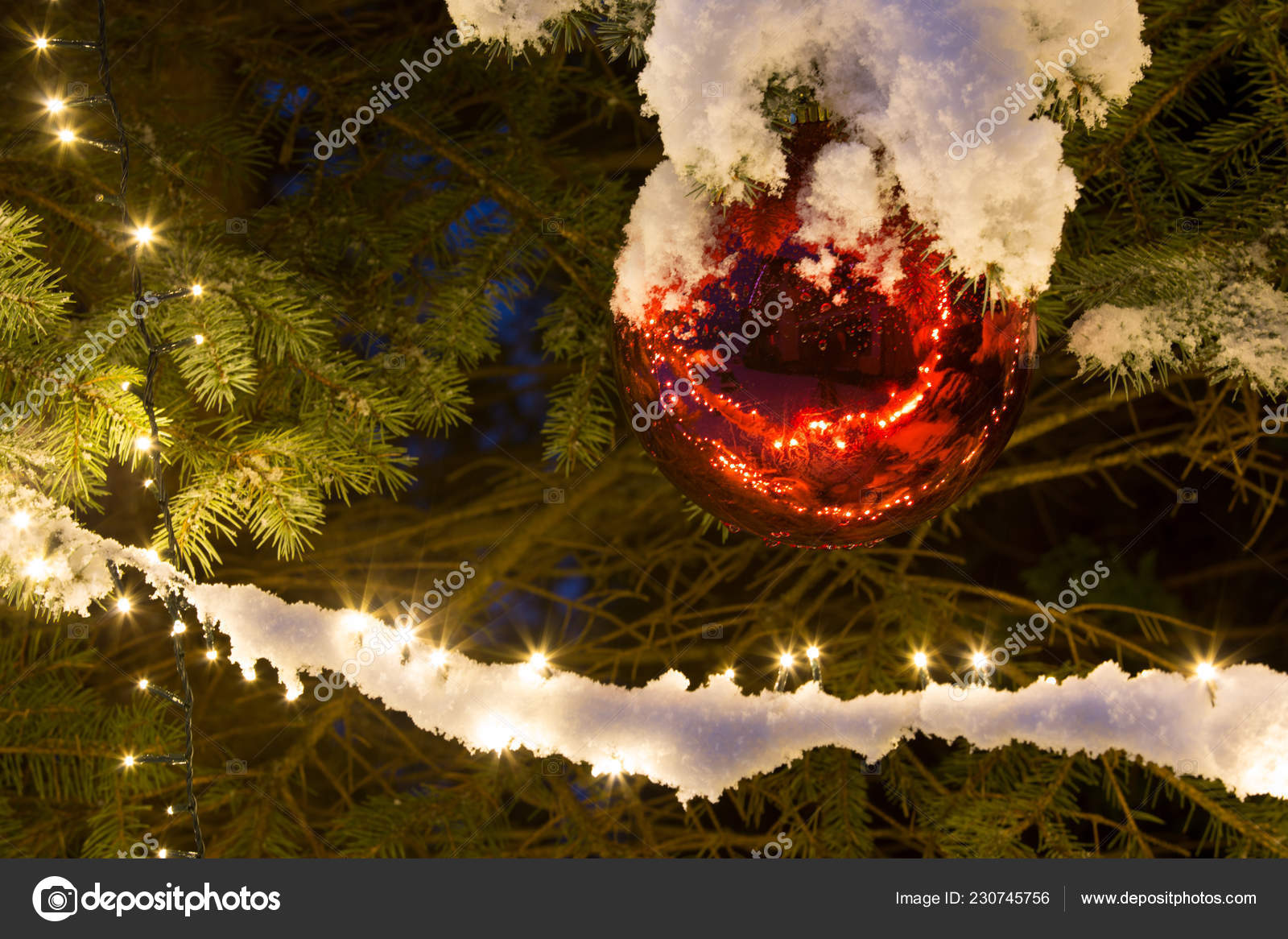 snow covered pine tree lighting red glass ball christmas ornament stock photo image by c belphnaque 230745756