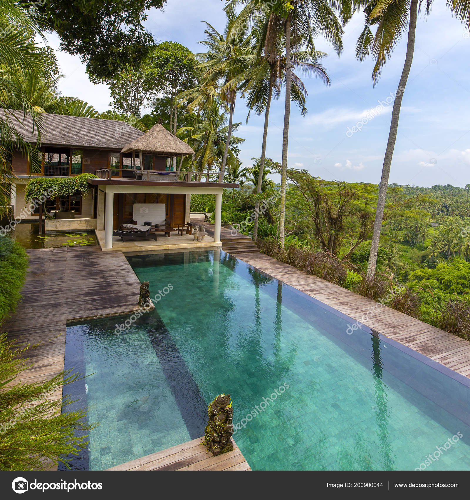 Coconut Palm Trees Relaxing Area Infinity Swimming Pool