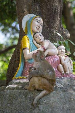 Macaque monkey with a baby next to a statue of the Madonna and Children in Rishikesh, India, close up