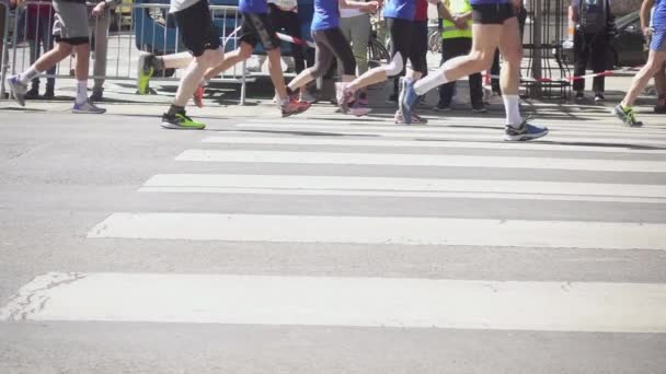 Legs of marathoners on the pedestrian crossing