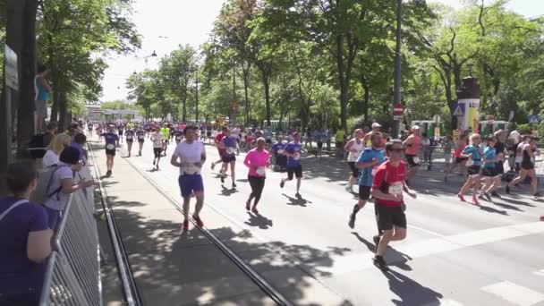 Spectators watch athletes marathon runners