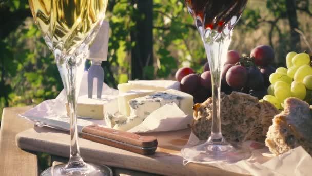 Zpomalený pohyb piknik venku v vinice