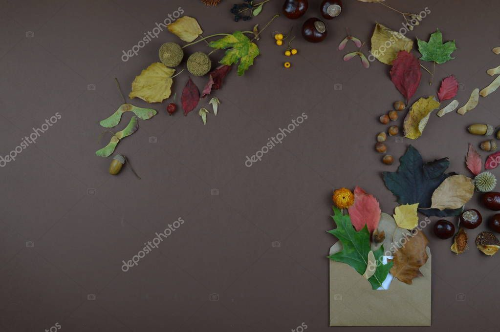 open envelope with autumnal greetings like colorful leaves, seeds, chestnuts, nuts and other fall fruits on brown background with copy space