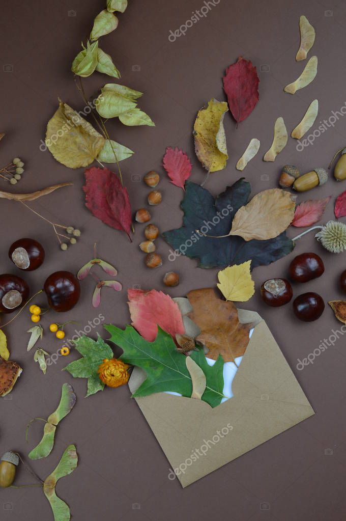 open envelope with autumnal greetings like colorful leaves, seeds, chestnuts, nuts and other fall fruits on brown background