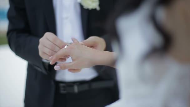Lo sposo mette lanello nuziale al dito di spose. Matrimonio, mani con gli anelli. La sposa e lo sposo scambio di fedi nuziali.