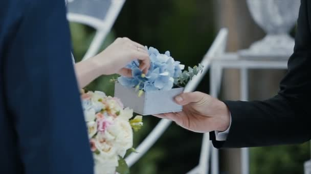 The bride puts the wedding ring on finger of the groom. marriage hands with rings. The bride and groom exchange wedding rings.