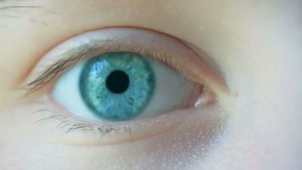 Uzavření makra samice lidské modré zelené oko