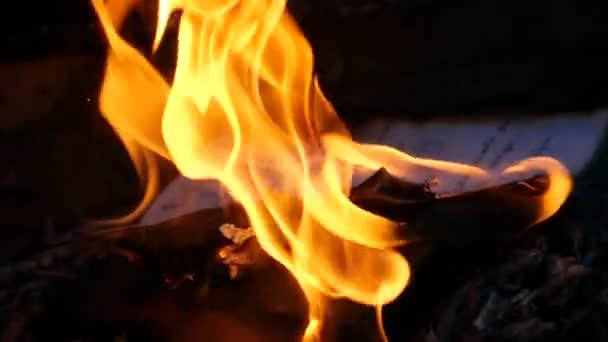 Manuelní stránky hoří ohněm. Bonfire z hořícího rukopisu