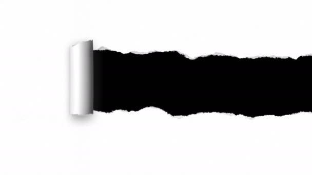 Sada roztrhaného papíru s místem pro váš obsah